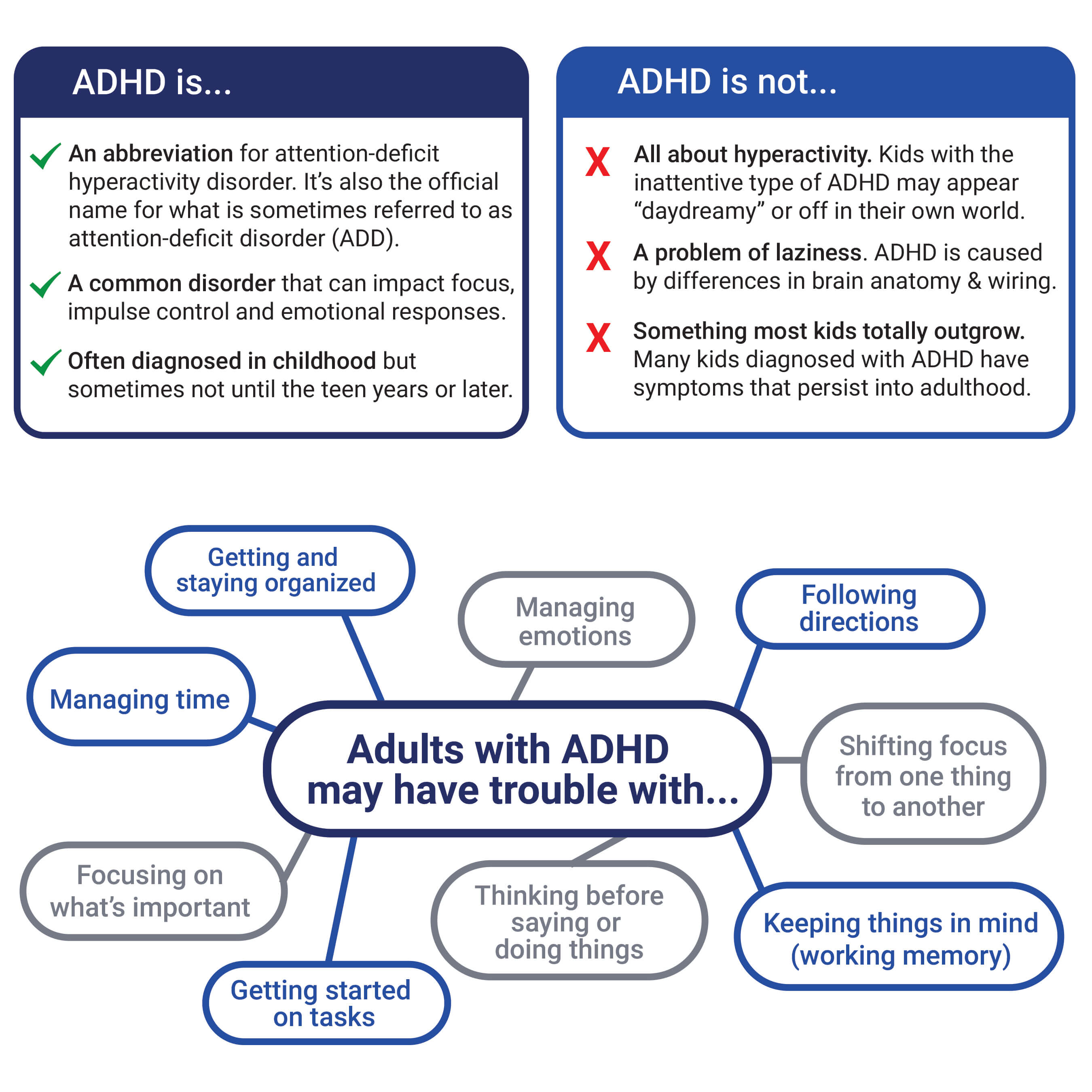 Adhd Neurology Brain Of Inattention | Best Upcoming Cars Reviews