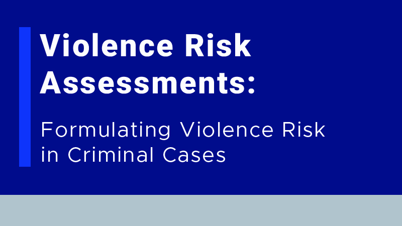 Violence Risk Assessments: A Guide to Evaluating Violence Risk in Criminal Cases